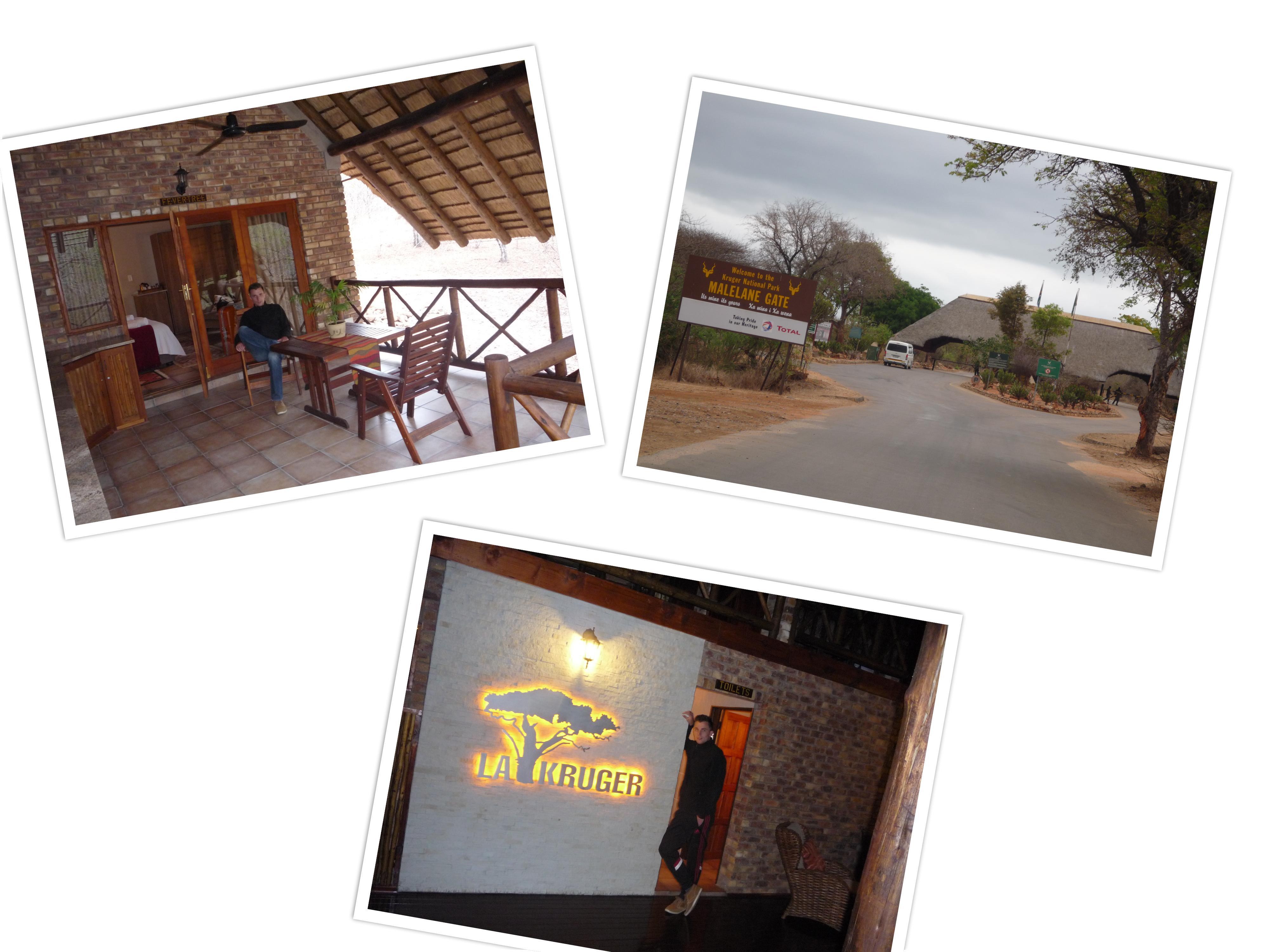 Van Moditlo naar La Kruger lodge. Prachtige locatie waar we het krugerpark bezochten in de ochtend. We zijn er maar 2,5 uur geweest, maar vonden wel de luipaard! De big five was dus compleet!